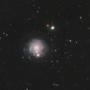 NGC 3344,                                SamAndrew