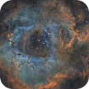 "NGC 2237 ""The Rosette Nebula"",                                Bert Scheuneman"