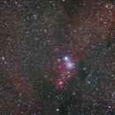 NGC2264,                                mrezzonico