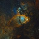 IC 1795 The Fish Head Nebula,                                Barry Wilson