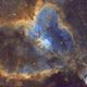 Heart Nebula/IC 1805,                                John Kroon