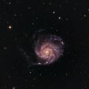 PinWheel Galaxy M101,                                Steven Rosen