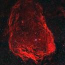 The Flying Bat Nebula,                                Mark Holbrook