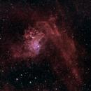 Flaming Star Nebula (IC 405),                                Daniel Erickson