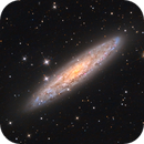 NGC 253 - Sculptor's galaxy - a teamwork's result,                                Wellerson Lopes