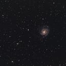 M101, wide field,                                Vincent Giranda