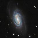 NGC2903,                                CARLOS GONZALEZ