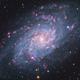 M33 - Triangulum Galaxy,                                José Manuel Taver...