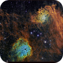 The Flaming Star Nebula with A Touch Of Hubble,                                Terry Hancock