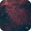 NGC6188 plus NGC 6165,                                Trevor McDougall
