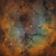 Space Rainbow - IC1396,                                Tudor Chibacu