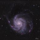 M101, The Pinwheel Galaxy in LRGB(Ha),                                Gabriel Cardona