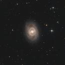 M95,                                Bart Delsaert