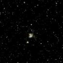 NGC4038,                                Lucien Falco