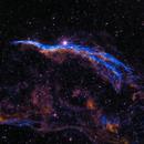 NGC 6960 - The Witch's Broom,                                David Andra