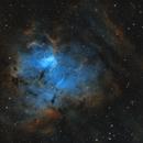 NGC 1491 in Perseus,                                Steve Milne