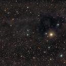 LDN 1251, Dark nebula,                                Lensman57