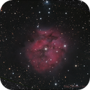 IC 5146 - The Cocoon Nebula,                                Hap Griffin