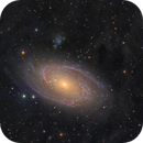 M81, M82 and some dust,                                wimvb