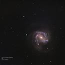 M61 with the supernova,                                Joostie