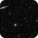 "NGC 891 ""Silver Sliver Galaxy"" and friends,                                Frank Kane"