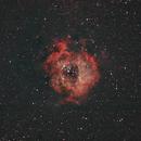 Rosette Nebula (Sh 2-275),                                dzambon