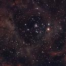 nebulosa roseta,                                adrian-HG