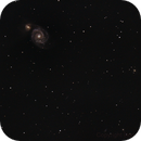 The Whirlpool Galaxy,                                Don Curry