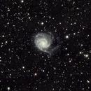 Pinwheel galaxy and friends,                                Astrobagel