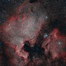 North America Nebula and Pelican Nebula,                                JMDean