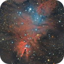 Cone Nebula, Christmas Tree Cluster and Fox Fur Nebula (NGC 2264),                                Henning Schmidt