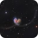 The Antennae Galaxies,                                Shannon Calvert