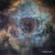 Rosette SHO with RGB stars: Kepler KL4040 First Light,                                Richard Francis