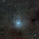 NGC7023 Iris Nebula,                                Brandon Liew