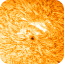 Sun (May 20, 2021) Active Region 2824  (AR2824),                                Alan Santana