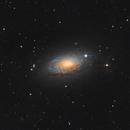 M 63 The Sunflower Galaxy,                                Stefan-Harry-Thrun