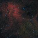 Sh2-132 - An RGB Lion in the Sky,                                Fabian Rodriguez...