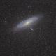 M31 FIELD,                                RAMON ESPAX