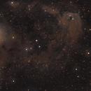 SH2-239 to NGC1555,                                Fritz
