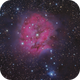 IC 5146 the Cocoon Nebula,                                Frank Colosimo
