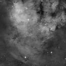 NGC 7822,                                apaquette