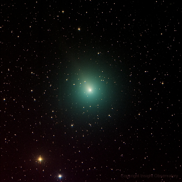 Comet 46P/Wirtanen,                                Insight Observatory