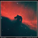Horsehead Nebula IC 434,                                Sid Frede