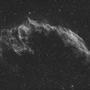 NGC6992,                                Eric Dreher