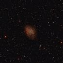 M1 Crab Nebula,                                Richard Cardoe