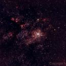 Nebulosa de la Tarántula,                                Héctor Henríquez Leighton