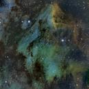 Pelican Nebula SHO,                                Allen Koenig