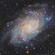 """M33 """"TRIANGULUM GALAXY"""" HA+LRGB,                                José Tapia Janet"""