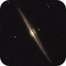 NGC 4565 Needle Galaxy,                                Michael Timm