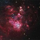 NGC2070 - Tarantula,                                Roberto Colombari